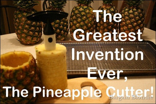 The greatest invention, the pineapple cutter!